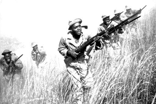 南非在第二次世界大战期间做出了哪些贡献?南非士兵是怎样的?