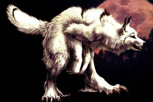 """狼狈为奸是什么意思?狼狈为奸中的""""狈""""指的是什么"""